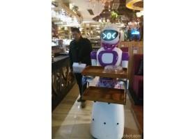 迎宾机器人 美女餐厅机器人,迎宾机器人 美女餐厅机器人价格