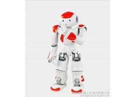 NAO机器人,NAO机器人厂家,NAO机器人价格